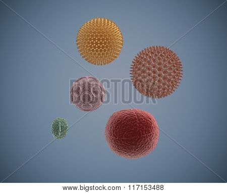Under The Microscope, Pollen