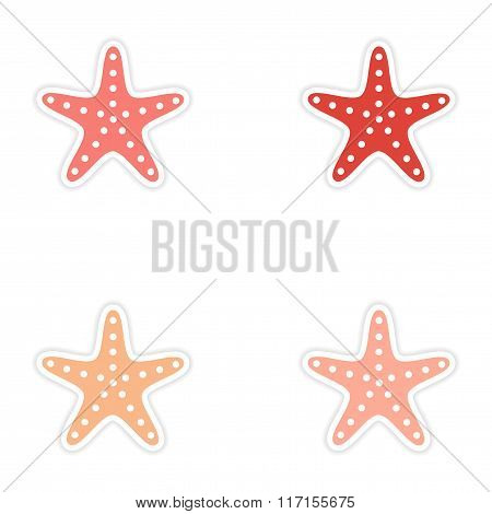 assembly realistic sticker design on paper sea star