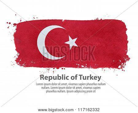 flag of Turkey. vector illustration