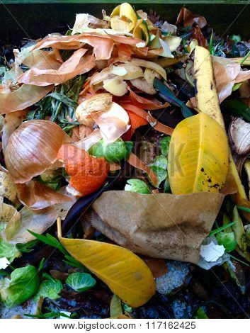 Compost, biowaste in the garden for recycling