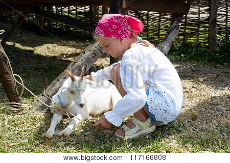 Little child caring for the goatling on the farm