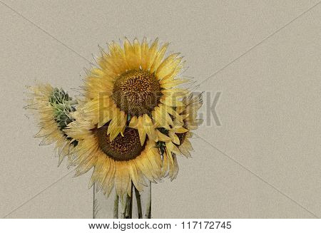 Bouquet of bright sunflowers in vase.