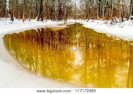 winter, Gollansky park