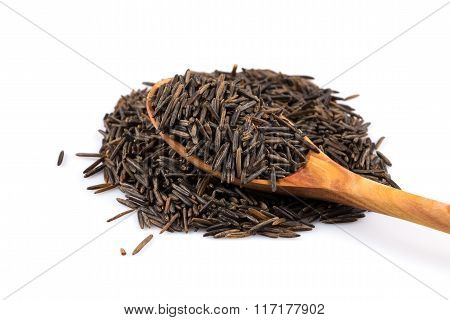 Wild Brown Rice In Spoon