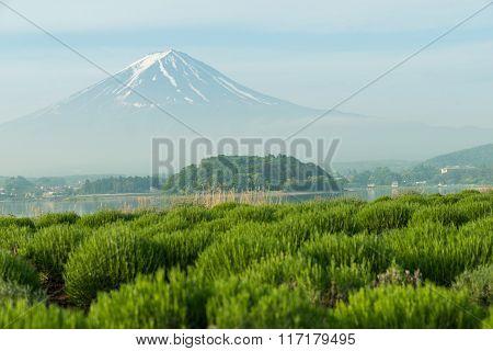 Close Up Of Mt Fuji In Japan