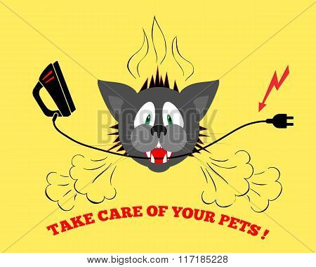 Cats head bite electrical wire, cable. Care of pets. Danger info illustration. Pets insurance symbol