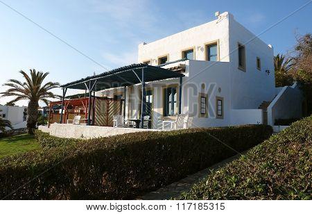 Villa And Palms.
