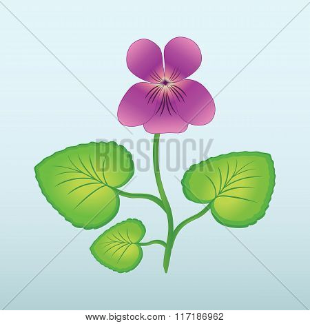 Spring flower Viola, violet. Floral icon. Yellow, violet, lilac bud with stem and leaves on light bl
