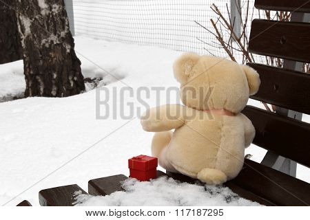 Bear with a present