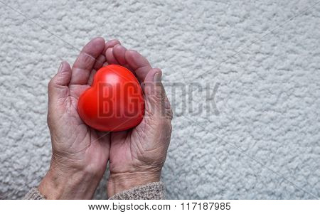 Old Woman Hands Holding Red Heart, Top View