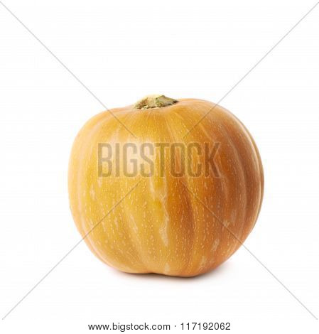Single ripe orange pumpking isolated