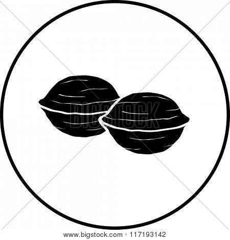 walnuts symbol