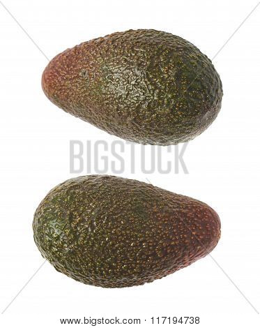Single ripe avocado isolated