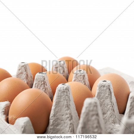 Filled egg carton package isolated