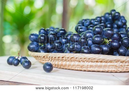 Black Grapes On Bamboo Plate