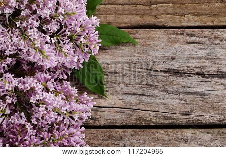 The Flower Lilac A Wooden Background