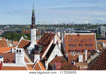 August over the roofs of old Tallinn