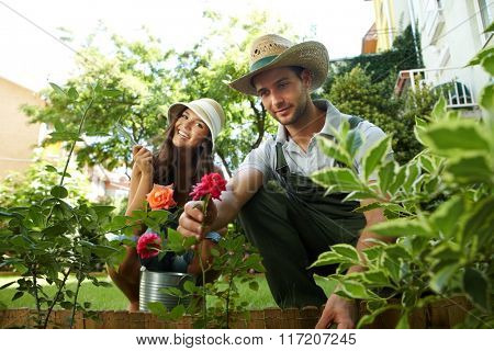 Happy couple taking care of roses in the garden, smiling.