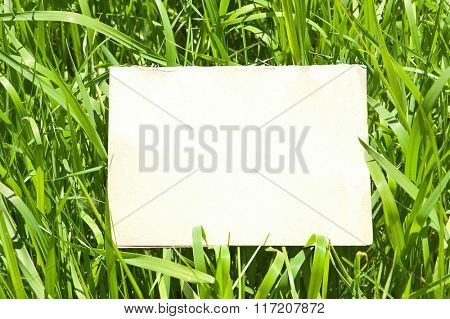 Paper on green grass background