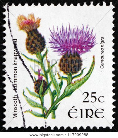 Postage Stamp Ireland 2007 Common Knapweed, Flowering Plant