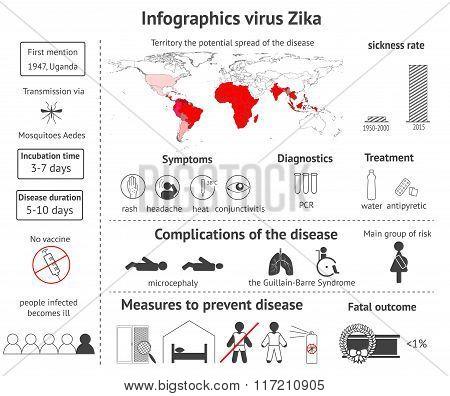 Infographics Virus Zika