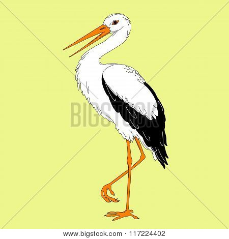 Stork white outline