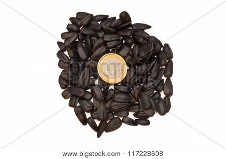 Pile Of Sunflower Seeds On White Background.