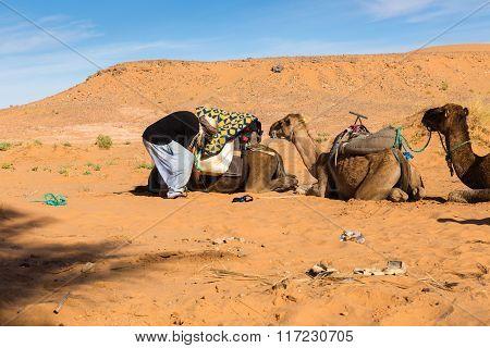 Berber is preparing a caravan in the way