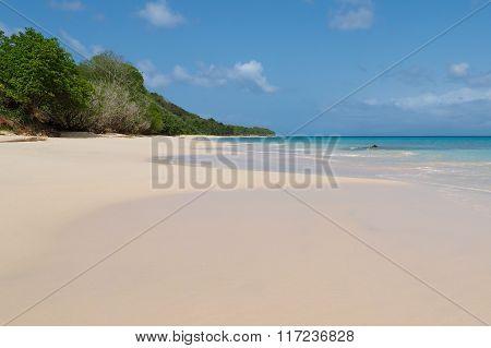 Anse De Mays, Sandy Beach In Marie Galante