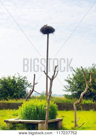 Stork Nest On Pole