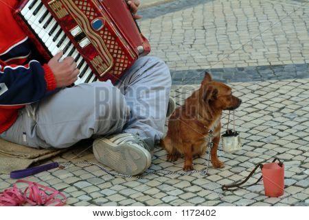 Mendigo produciendo música en la calle