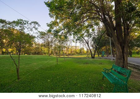 Green Bench In A Beautiful Park