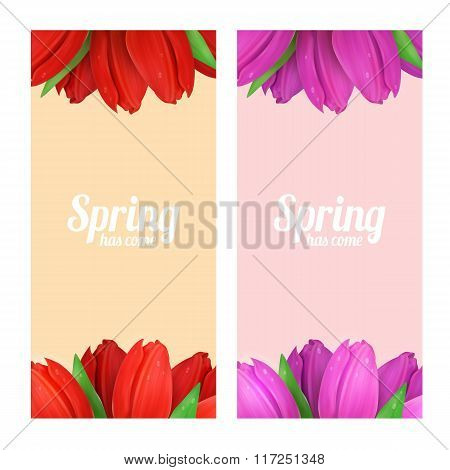 Tulip flowers frame composition.