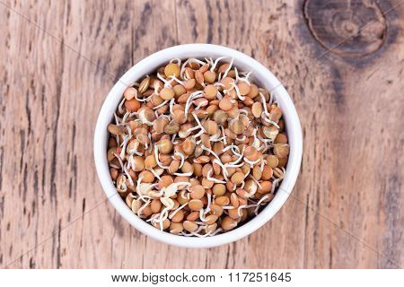 Bowl Of Sprouted Lentils.