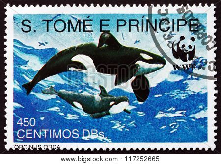 Postage Stamp Sao Tome And Principe 1992 Killer Whale