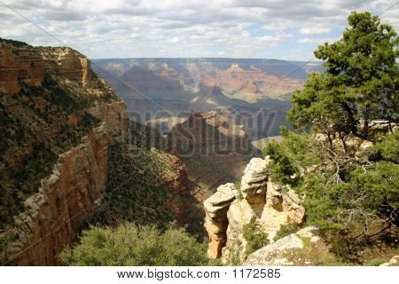 Grand Canyon View - South Rim