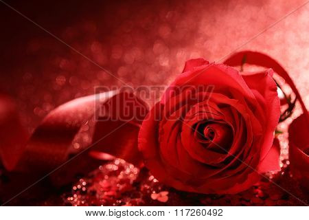 Red rose with ribbon on bokeh background,Closeup.