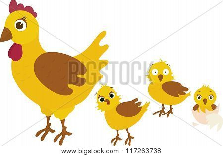 Chicken family, with the mother of her three yellow chicken babies - vector illustration.