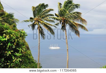 Cruise Ship Passes Between Palms Trees