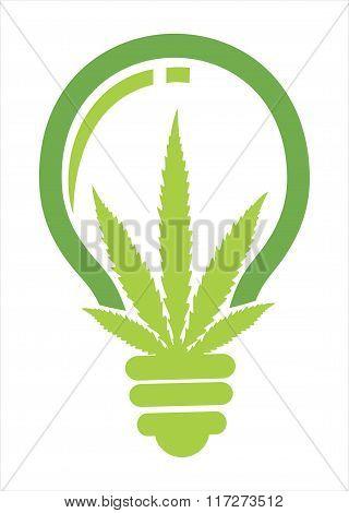 lamp bulb marijuana