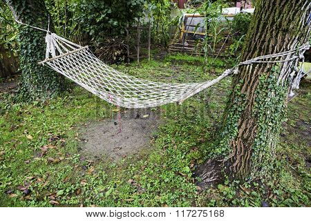 Comfortable Mesh Hammock Stretched Between Two Trees In A Green Garden