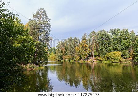 Pond And Trees In The Park. Nature