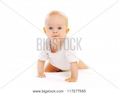 Cute Little Baby Crawls On A White Background