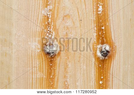 Pine Wood Plank Texture Light Brown With Knots And Resin