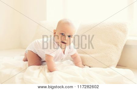 Cute Baby Crawls At Home In White Room Near Window