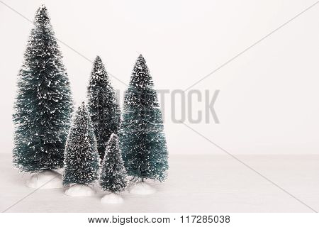 Miniature Evergreen Trees