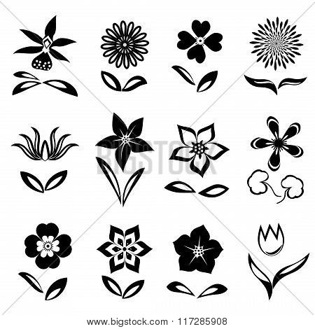 Flower icon set. Black cutout silhouettes on white background.  Isolated symbols of flowers and leav