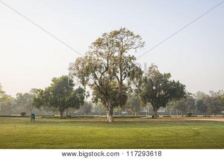 Park Of Rajpath