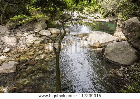 Brook flowing among rocks