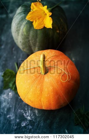 Small pumpkin on a table